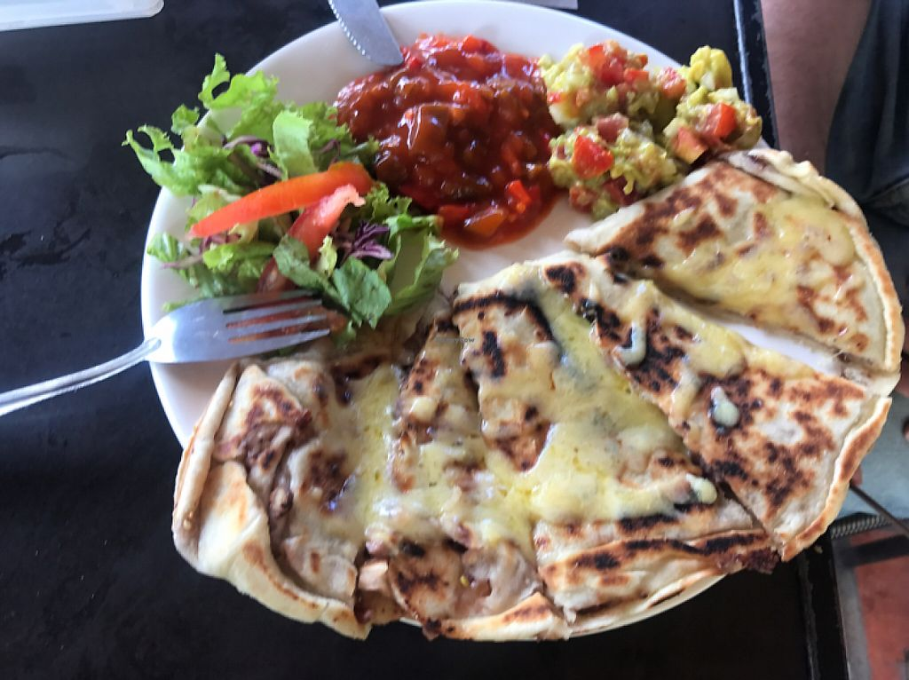 """Photo of EL Cafe Vegetarian Food  by <a href=""""/members/profile/ShowKuo"""">ShowKuo</a> <br/>Quesadilla 70k ( the vegan cheese is amazing!) <br/> May 29, 2017  - <a href='/contact/abuse/image/64136/263863'>Report</a>"""