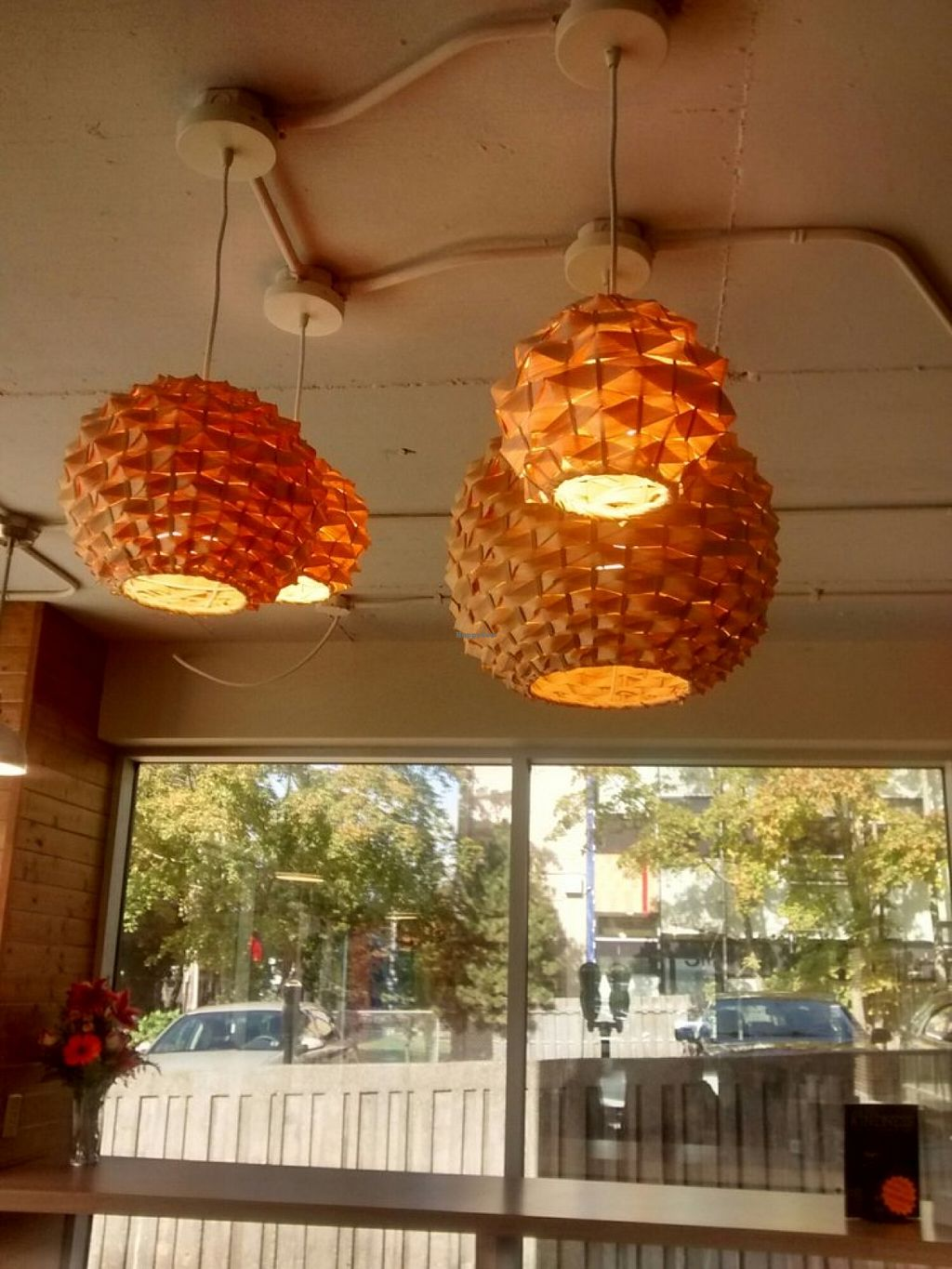 """Photo of CLOSED: Fruition  by <a href=""""/members/profile/QuothTheRaven"""">QuothTheRaven</a> <br/>Love these lights <br/> October 25, 2015  - <a href='/contact/abuse/image/64144/122644'>Report</a>"""