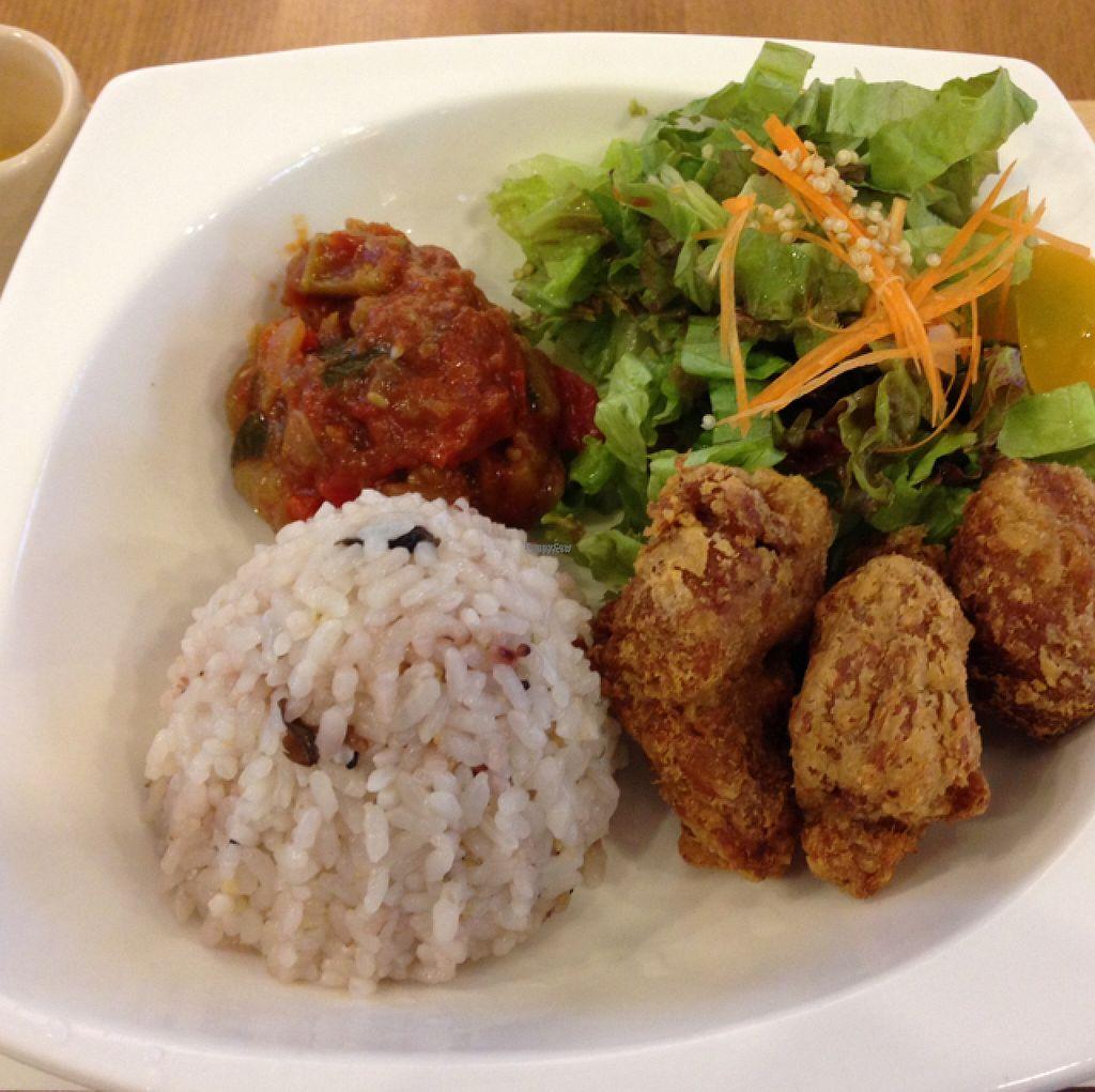 "Photo of Sekai Cafe   by <a href=""/members/profile/lemurcat"">lemurcat</a> <br/>veggy karadon  <br/> August 10, 2016  - <a href='/contact/abuse/image/64245/167416'>Report</a>"