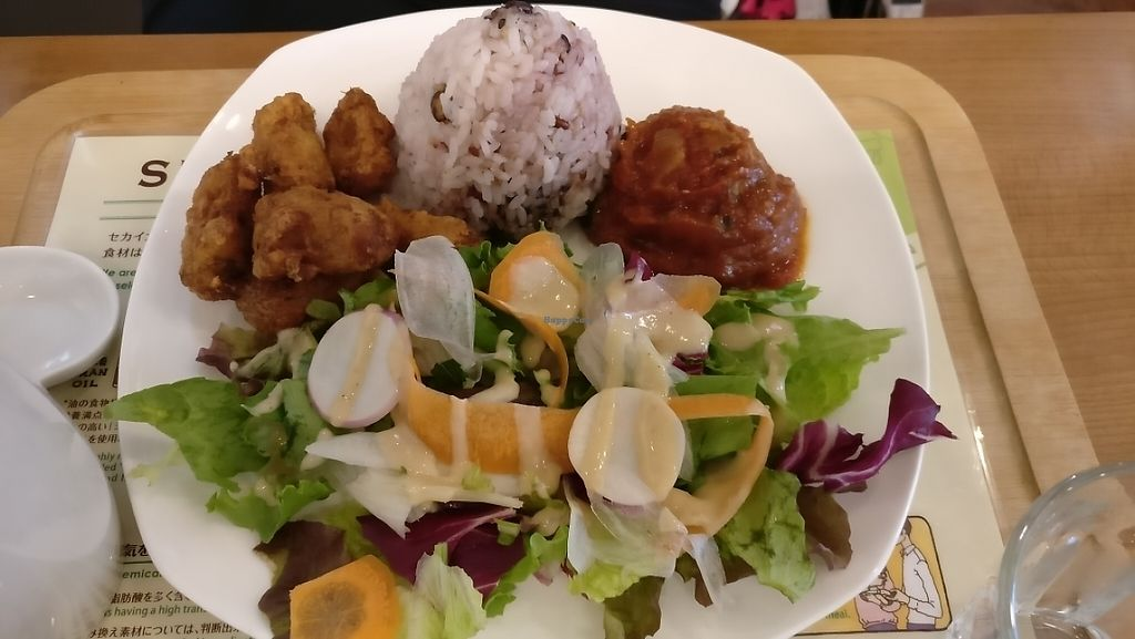 """Photo of Sekai Cafe   by <a href=""""/members/profile/JohnnieMeijer"""">JohnnieMeijer</a> <br/>This was also great!  <br/> May 6, 2017  - <a href='/contact/abuse/image/64245/256115'>Report</a>"""