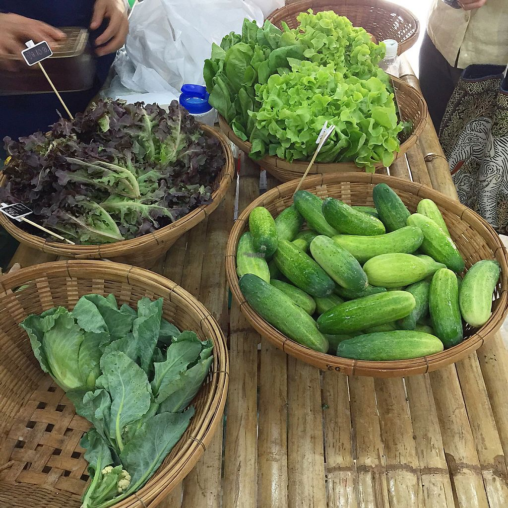 """Photo of Organic Farmers' Market Chiang Mai  by <a href=""""/members/profile/MyVeganJoy"""">MyVeganJoy</a> <br/>affordable, local, organic  <br/> February 12, 2017  - <a href='/contact/abuse/image/6424/225659'>Report</a>"""