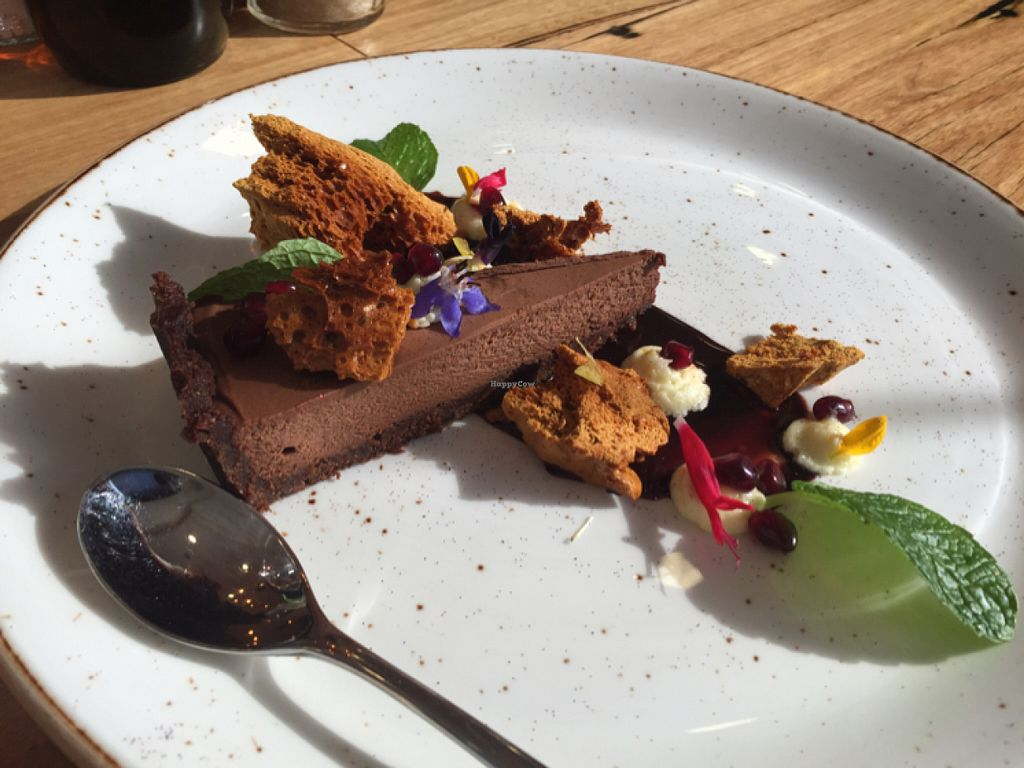 "Photo of Power Plant Cafe  by <a href=""/members/profile/Kittybiscuit"">Kittybiscuit</a> <br/>choc tart with ""honeycomb"" and orange cream. vegan! delicious! <br/> July 31, 2016  - <a href='/contact/abuse/image/64495/163707'>Report</a>"