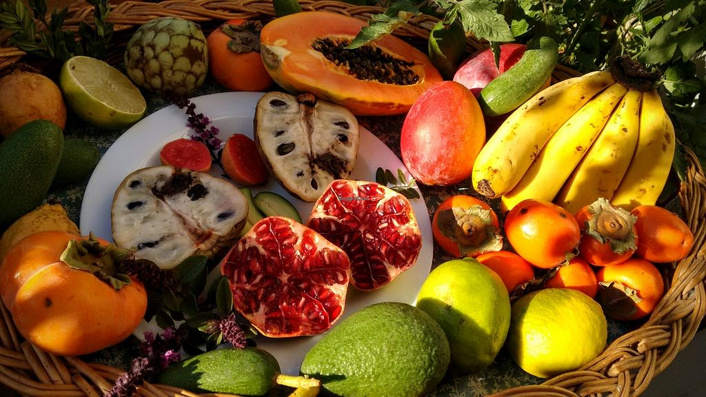 "Photo of Raw in Berlin Fresh Food-Coop  by <a href=""/members/profile/springhuepfer"">springhuepfer</a> <br/>Various fruits from Andalusia <br/> November 9, 2015  - <a href='/contact/abuse/image/64614/124432'>Report</a>"