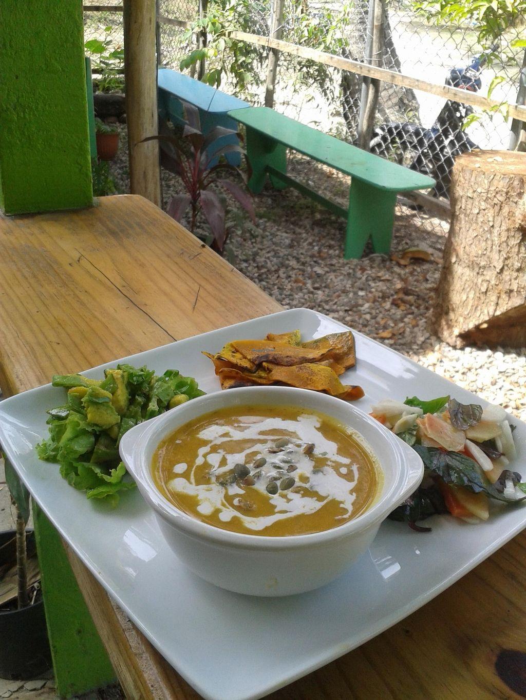 "Photo of CLOSED: Clorofila  by <a href=""/members/profile/MariaMironova"">MariaMironova</a> <br/>Carrot cream soup with fresh coconut milk;sauteed pumpkin;daikon, hibiskus & green papaya salad,;avocado,lettuce& fresh green peas salad <br/> October 20, 2015  - <a href='/contact/abuse/image/64741/121975'>Report</a>"