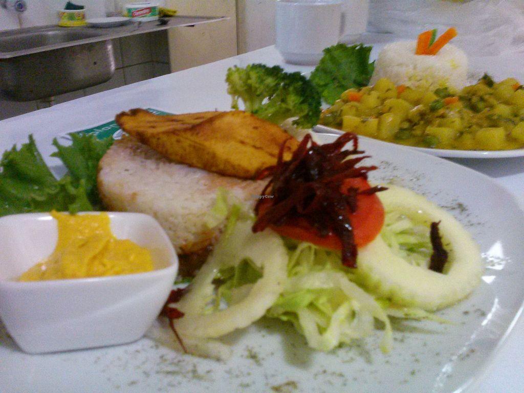 "Photo of CLOSED: Plantbased Restaurant  by <a href=""/members/profile/cheframa"">cheframa</a> <br/>Arroz Tapado a la Cubana and Veggie Cau Cau <br/> November 6, 2015  - <a href='/contact/abuse/image/64755/124115'>Report</a>"