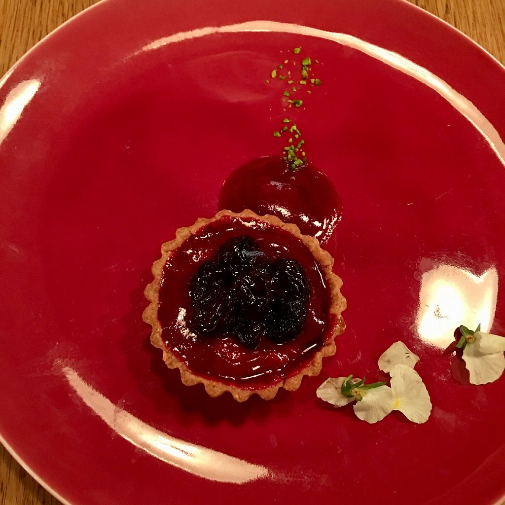 """Photo of Restaurant 8ablish  by <a href=""""/members/profile/Shanghai%20Sally"""">Shanghai Sally</a> <br/>berry and pistachio tart  <br/> April 7, 2017  - <a href='/contact/abuse/image/64910/245366'>Report</a>"""