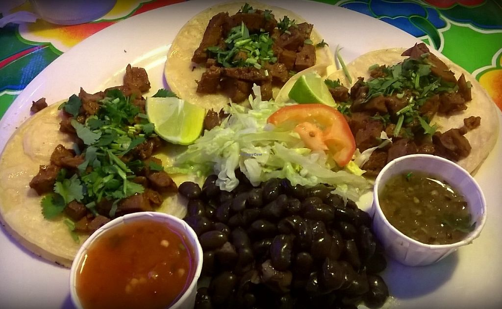 Photo of Mi Ranchito Grill  by Navegante <br/>Vegan street tacos with seitan, Feb 2016 <br/> February 3, 2016  - <a href='/contact/abuse/image/64954/231205'>Report</a>