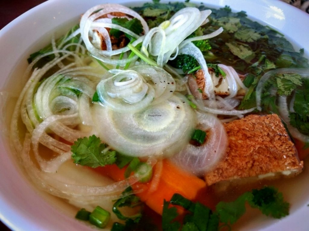Photo of Hot Banh Vietnamese Sandwiches  by Navegante <br/>Vegan Pho, Apr 2016 <br/> April 13, 2016  - <a href='/contact/abuse/image/64955/144464'>Report</a>
