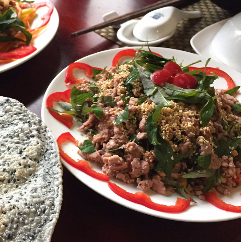 "Photo of San May Vegetarian  by <a href=""/members/profile/Knauji82"">Knauji82</a> <br/>looks like tuna but is made from some Vietnamese fruit <br/> February 12, 2017  - <a href='/contact/abuse/image/65128/225680'>Report</a>"