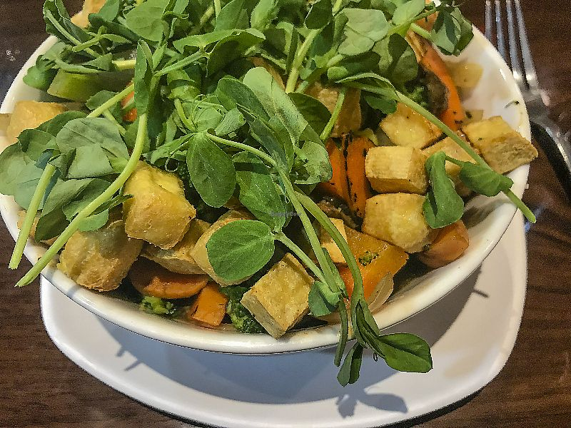 """Photo of GreenFare Organic Cafe  by <a href=""""/members/profile/LeighScott"""">LeighScott</a> <br/>Dishes feature a variety of textures, colors, and flavors <br/> April 9, 2018  - <a href='/contact/abuse/image/65180/383023'>Report</a>"""