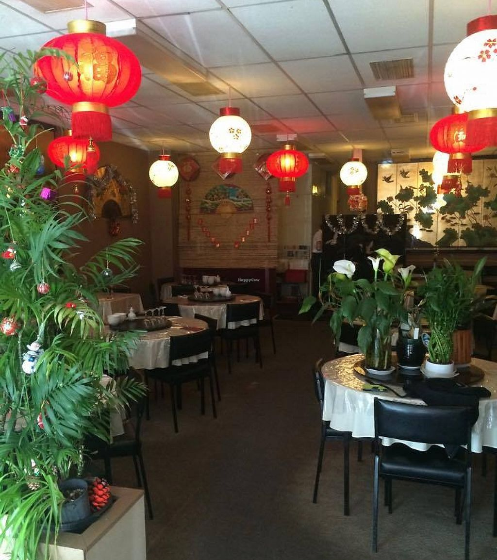 """Photo of Lucky Inn  by <a href=""""/members/profile/community"""">community</a> <br/>Inside Lucky Inn   <br/> November 8, 2015  - <a href='/contact/abuse/image/65278/256976'>Report</a>"""