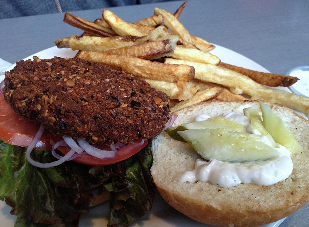 Photo of Comet Cafe  by RamblingVegans <br/>Vegan Big Luck Burger <br/> March 2, 2014  - <a href='/contact/abuse/image/6528/65109'>Report</a>