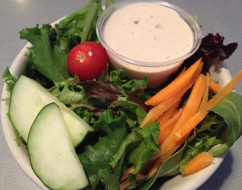 Photo of Comet Cafe  by RamblingVegans <br/>Side salad with vegan thousand island dressing.   <br/> March 2, 2014  - <a href='/contact/abuse/image/6528/65114'>Report</a>