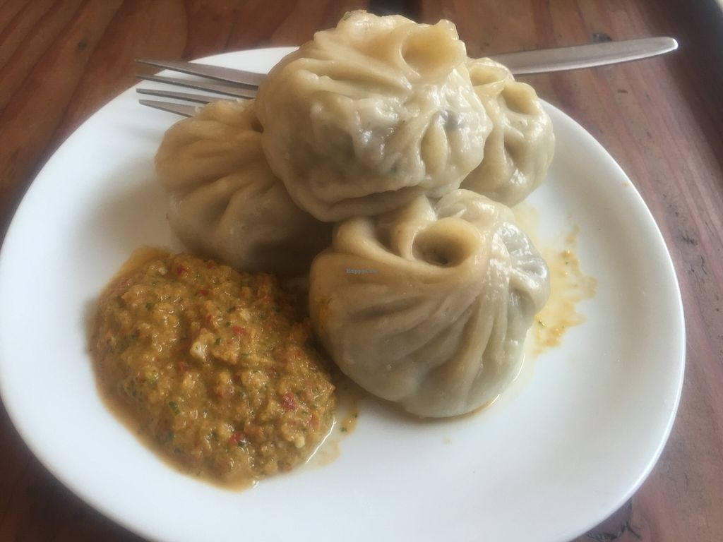 """Photo of Lentil As Anything - Thornbury  by <a href=""""/members/profile/Tiggy"""">Tiggy</a> <br/>Tofu and vegetable dumplings - January 2016 <br/> January 30, 2016  - <a href='/contact/abuse/image/65328/134246'>Report</a>"""