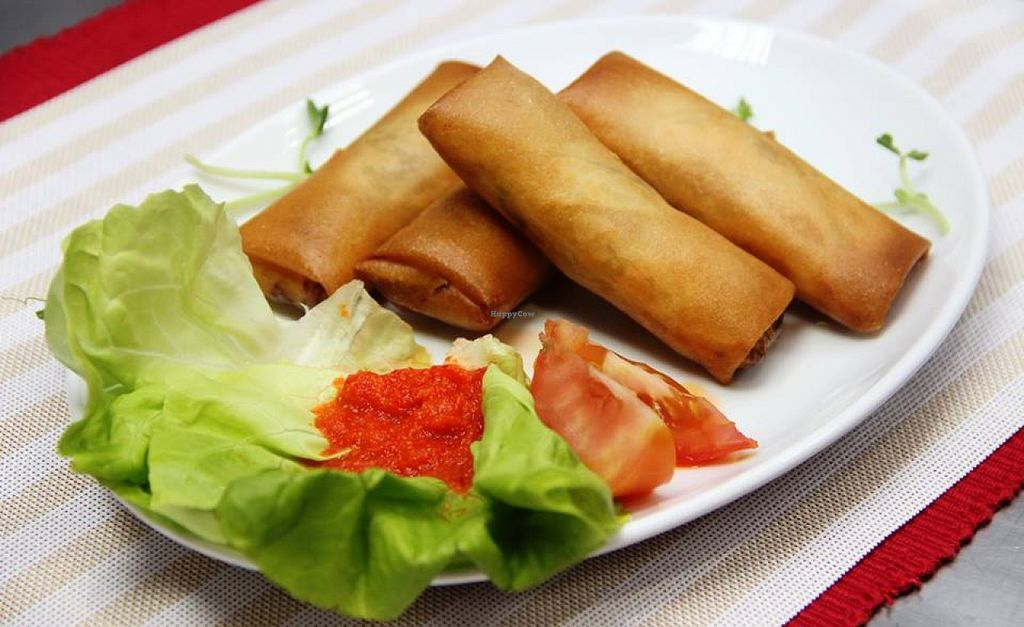 "Photo of SuperVeg Cafe  by <a href=""/members/profile/community"">community</a> <br/>vegetarian spring rolls  <br/> November 13, 2015  - <a href='/contact/abuse/image/65527/124832'>Report</a>"