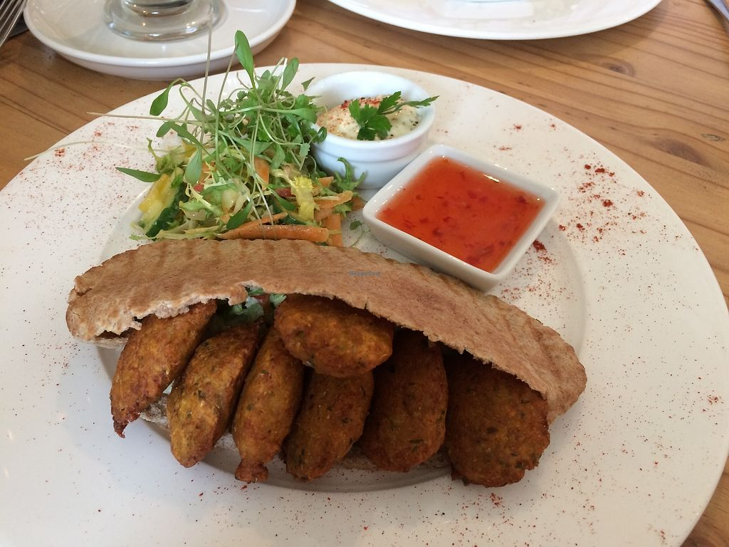 "Photo of The Veggie Cafe  by <a href=""/members/profile/Hoggy"">Hoggy</a> <br/>Falafel pita, served with small, fresh salad, houmous and sweet chilli sauce <br/> June 20, 2017  - <a href='/contact/abuse/image/65575/271527'>Report</a>"