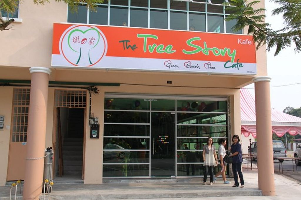 """Photo of The Tree Story Cafe   by <a href=""""/members/profile/community"""">community</a> <br/>The Tree Story Cafe <br/> November 10, 2015  - <a href='/contact/abuse/image/65628/124543'>Report</a>"""