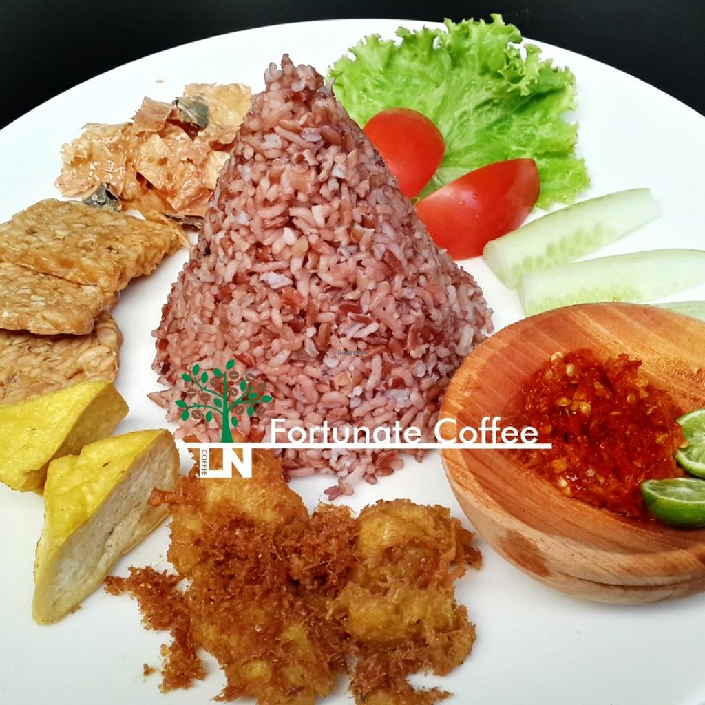 "Photo of LN Fortunate Coffee - Bandung City  by <a href=""/members/profile/Fortunate%20Coffee%20Bdg"">Fortunate Coffee Bdg</a> <br/>Nasi Timbel Joyful, salah satu menu khas Fortunate Coffee Bandung <br/> November 25, 2015  - <a href='/contact/abuse/image/65637/126158'>Report</a>"