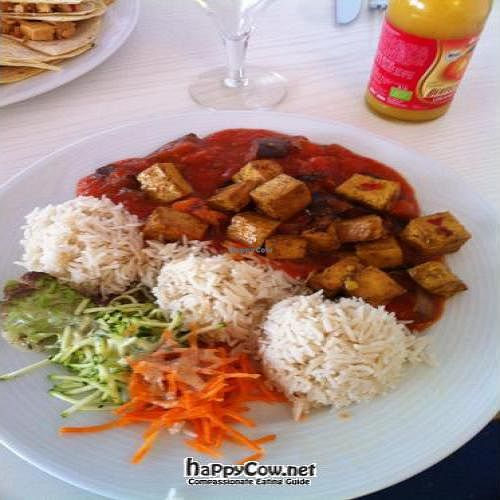 """Photo of CLOSED: Effulgence-Waves  by <a href=""""/members/profile/browntown76"""">browntown76</a> <br/>Indian dish with tofu, basmati rice, and salad <br/> January 22, 2012  - <a href='/contact/abuse/image/6567/26735'>Report</a>"""