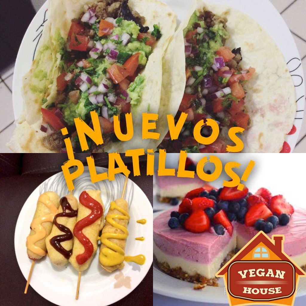 """Photo of Vegan House  by <a href=""""/members/profile/HectorHernandez"""">HectorHernandez</a> <br/>More options! <br/> November 7, 2016  - <a href='/contact/abuse/image/65692/187267'>Report</a>"""