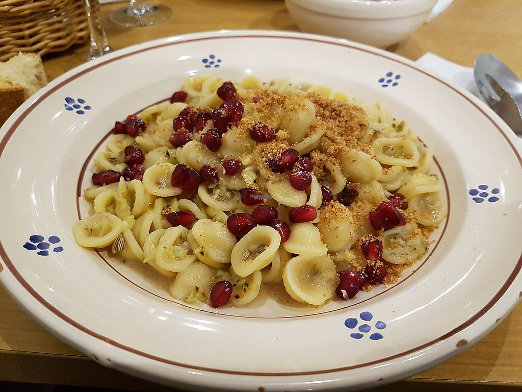 "Photo of Apulia  by <a href=""/members/profile/JonJon"" class=""title__title"">JonJon</a> <br/>Orecchiette with pomegranata <br/> February 5, 2017  - <a href='/contact/abuse/image/65736/222869'>Report</a>"