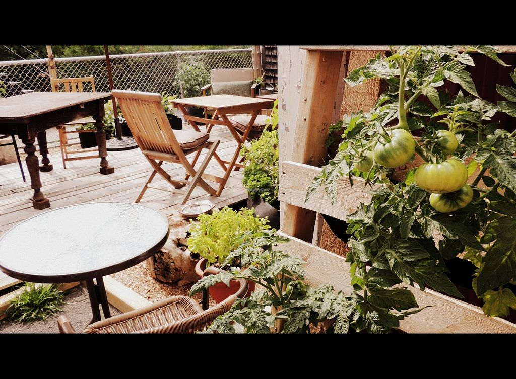 """Photo of L'ilot  by <a href=""""/members/profile/Nadie"""">Nadie</a> <br/>Comme relax in our private terrasse - organic garden at L'Îlot in the summer ! <br/> November 13, 2015  - <a href='/contact/abuse/image/65769/124898'>Report</a>"""