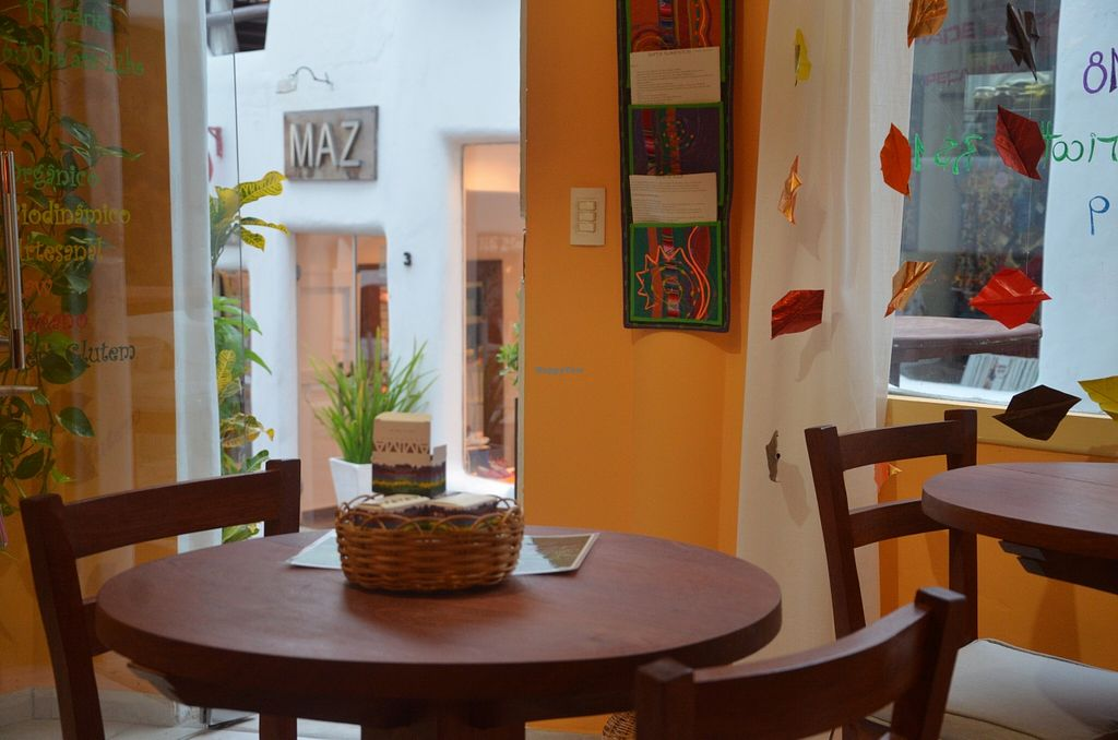 "Photo of Armazem Raiz  by <a href=""/members/profile/Raiz"">Raiz</a> <br/>View from the inside. It is located in the most beautiful place in Pipa. Its called Vila Mangueira <br/> November 27, 2015  - <a href='/contact/abuse/image/65812/126300'>Report</a>"