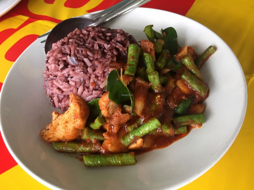 """Photo of CLOSED: Sankhongnoi Veggie  by <a href=""""/members/profile/notsorural"""">notsorural</a> <br/>stir fried string beans, tofu with red curry! just 35 baht! <br/> December 17, 2015  - <a href='/contact/abuse/image/65861/128885'>Report</a>"""