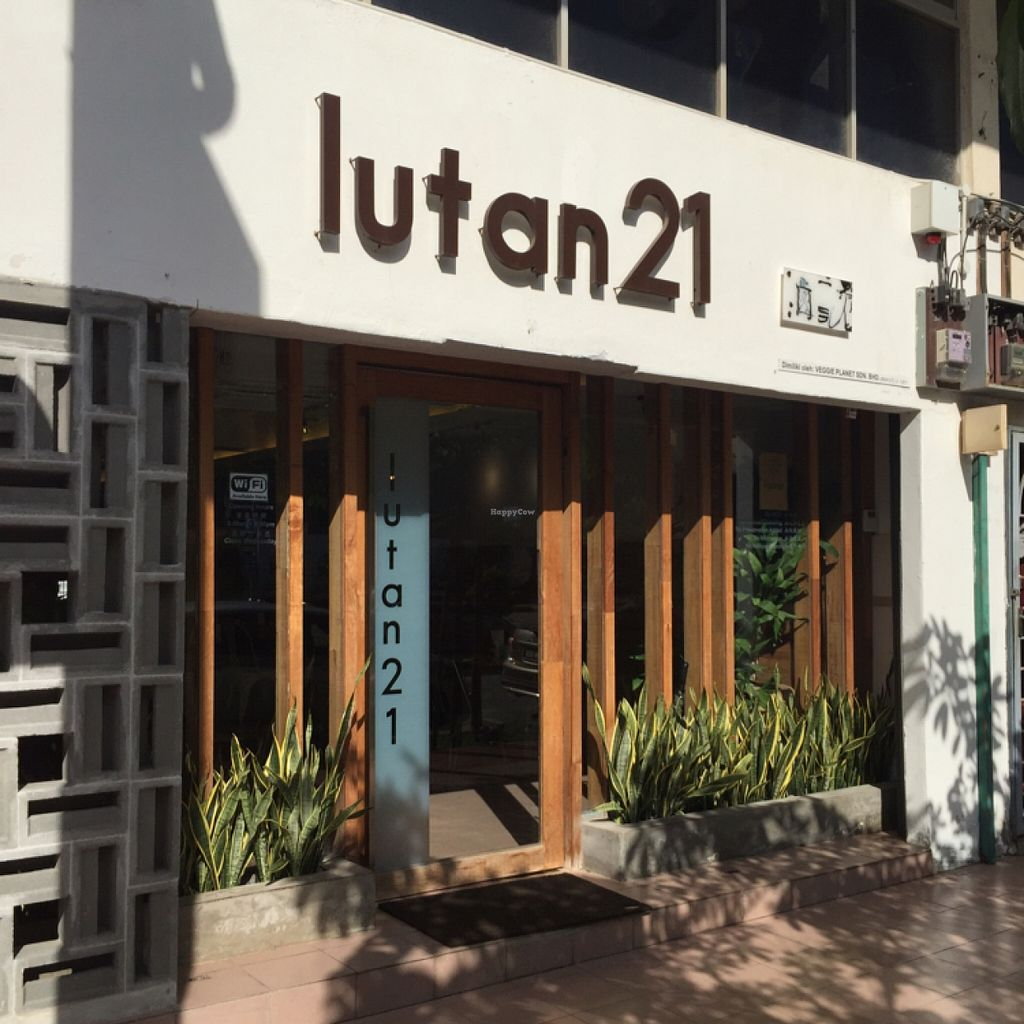"Photo of Lutan 21  by <a href=""/members/profile/Nissey"">Nissey</a> <br/>shop <br/> December 14, 2015  - <a href='/contact/abuse/image/65866/128374'>Report</a>"