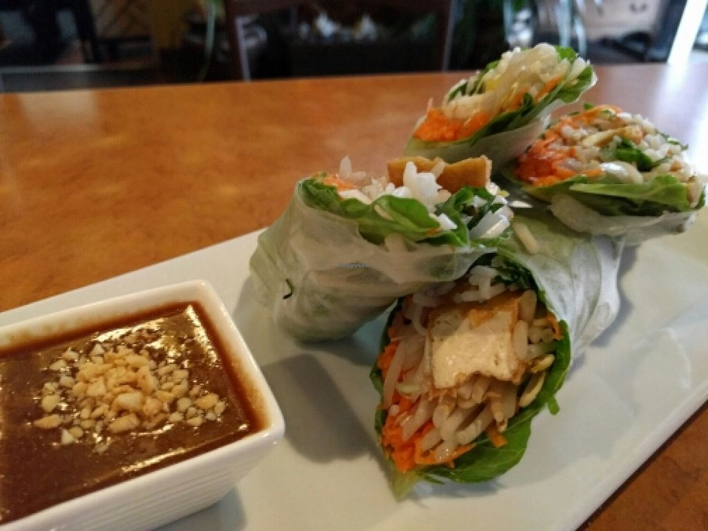 """Photo of Rim Talay  by <a href=""""/members/profile/The%20Hungry%20Vegan"""">The Hungry Vegan</a> <br/>Fresh Wraps <br/> June 2, 2016  - <a href='/contact/abuse/image/65977/151818'>Report</a>"""