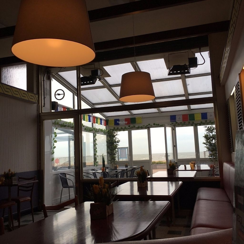"""Photo of Sneeuw Tearoom  by <a href=""""/members/profile/VeggieGastronaut"""">VeggieGastronaut</a> <br/>View of porch seating from the indoor seating room <br/> November 16, 2016  - <a href='/contact/abuse/image/65979/190954'>Report</a>"""