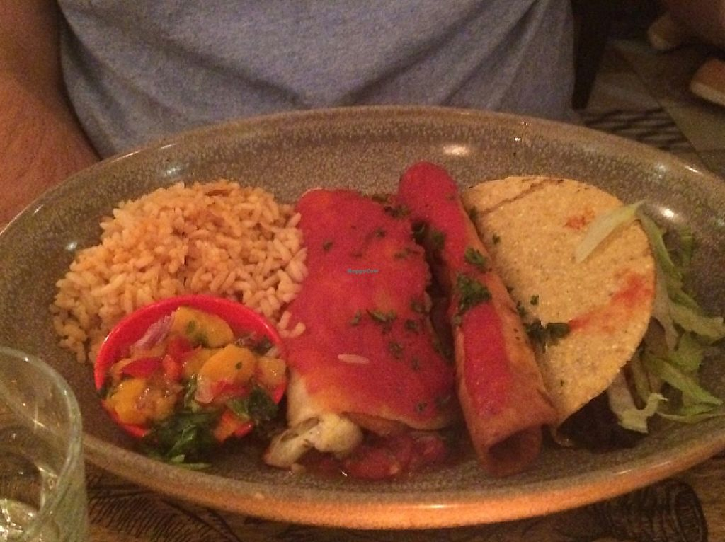 "Photo of CLOSED: Fiesta Mexican Restaurant  by <a href=""/members/profile/alia_801"">alia_801</a> <br/>Vegan combo plate <br/> February 26, 2016  - <a href='/contact/abuse/image/65990/261933'>Report</a>"