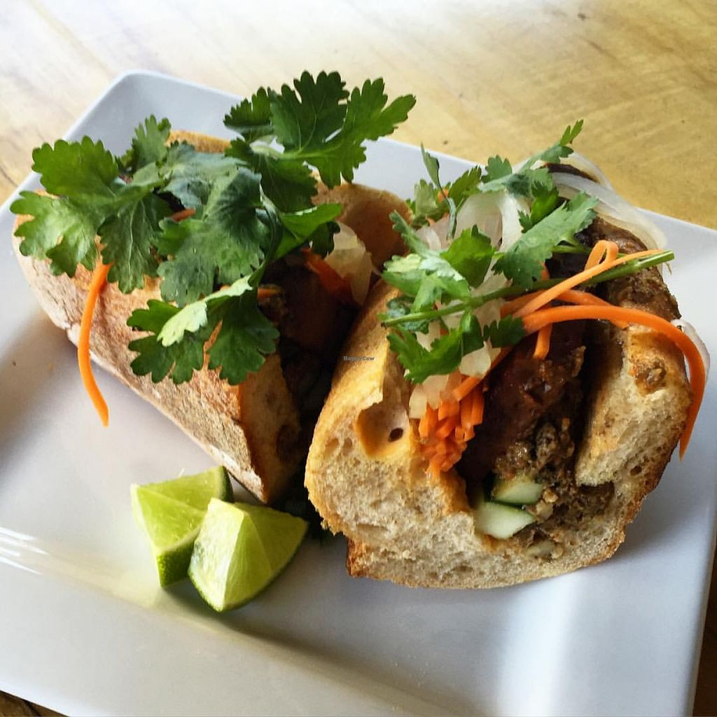 """Photo of Front Street Cafe  by <a href=""""/members/profile/frontstreetcafe"""">frontstreetcafe</a> <br/>Front Street Cafe - Tofu Bahn Mi (vegan).  On a vegan roll.   <br/> November 22, 2015  - <a href='/contact/abuse/image/65996/125834'>Report</a>"""