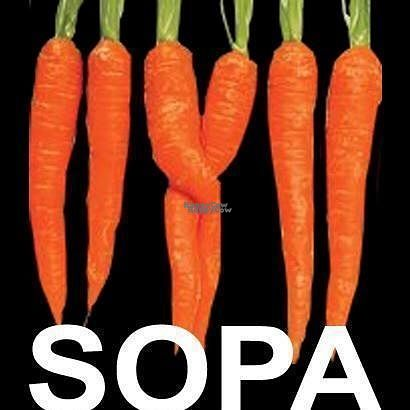 "Photo of SOPA  by <a href=""/members/profile/Meaks"">Meaks</a> <br/>SOPA <br/> September 1, 2016  - <a href='/contact/abuse/image/66038/172827'>Report</a>"
