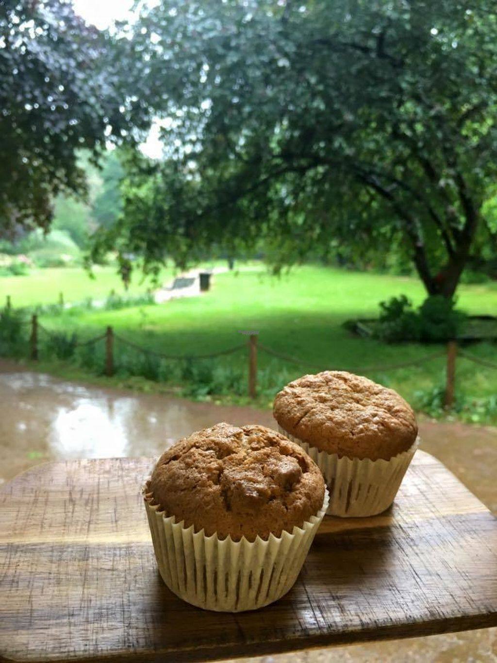 """Photo of Ginger Jules Kiosk  by <a href=""""/members/profile/Meaks"""">Meaks</a> <br/>Vegan Carrot Cake Muffins <br/> August 3, 2016  - <a href='/contact/abuse/image/66198/165170'>Report</a>"""
