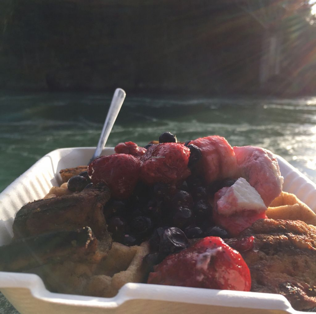 """Photo of CLOSED: 701 Coffee  by <a href=""""/members/profile/Cherezada"""">Cherezada</a> <br/>my to go waffles <br/> February 7, 2016  - <a href='/contact/abuse/image/66227/135356'>Report</a>"""