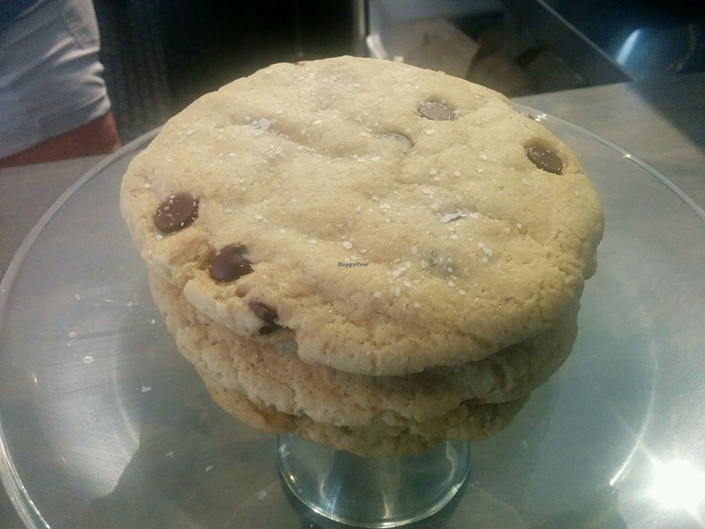 "Photo of Gnome Cafe  by <a href=""/members/profile/MizzB"">MizzB</a> <br/>chocolate chip cookies <br/> September 19, 2017  - <a href='/contact/abuse/image/66249/306125'>Report</a>"