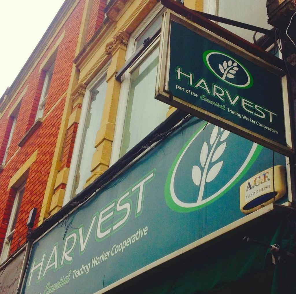"Photo of Harvest Natural Foods  by <a href=""/members/profile/community"">community</a> <br/>Harvest Natural Foods <br/> May 7, 2016  - <a href='/contact/abuse/image/6630/147922'>Report</a>"