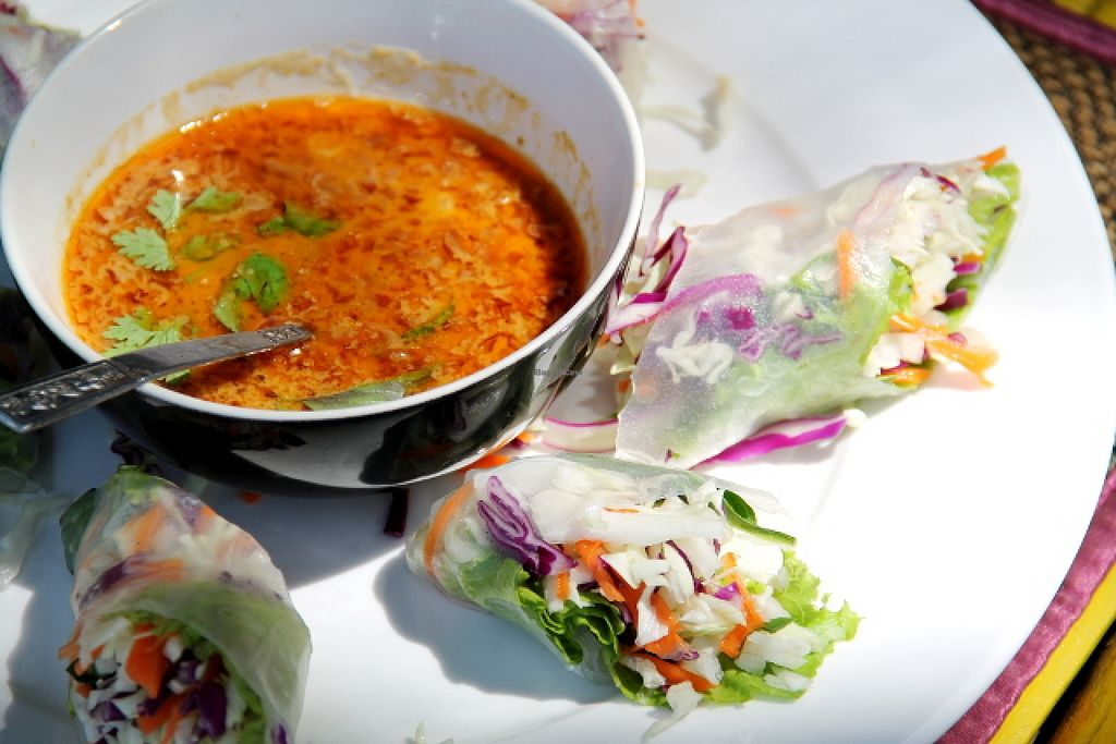 """Photo of Asylum  by <a href=""""/members/profile/reissausta%20ja%20ruokaa"""">reissausta ja ruokaa</a> <br/>Asylum summer rolls with good peanut dip sauce.  <br/> May 21, 2016  - <a href='/contact/abuse/image/66352/150063'>Report</a>"""