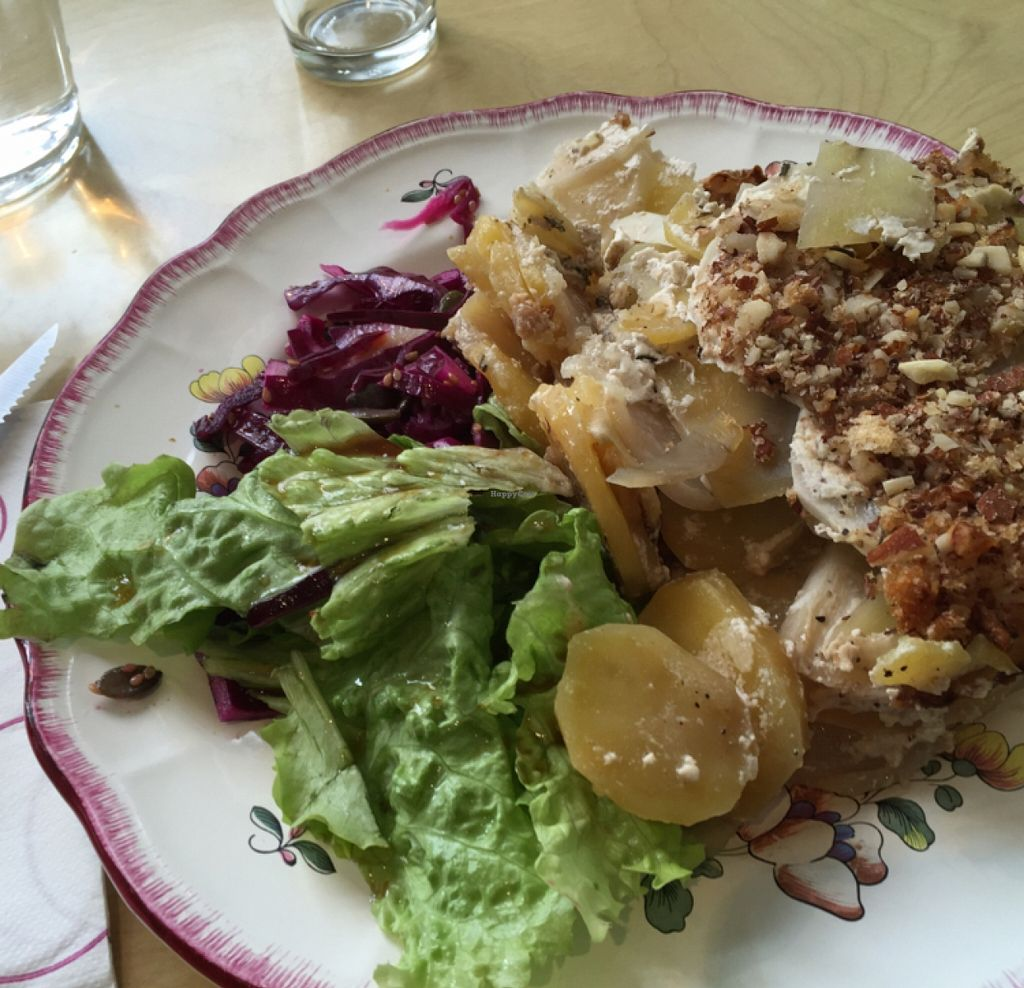 """Photo of Against the Grain  by <a href=""""/members/profile/iLikeTortles"""">iLikeTortles</a> <br/>potatoes and turnips with a simple salad~ delicious  <br/> January 7, 2016  - <a href='/contact/abuse/image/66470/131406'>Report</a>"""