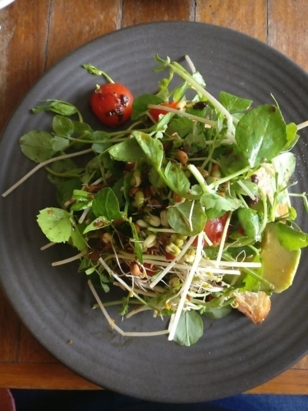 """Photo of Wide Open Road  by <a href=""""/members/profile/Aloo"""">Aloo</a> <br/>white bean toast with avo, sprouts..  <br/> May 7, 2017  - <a href='/contact/abuse/image/66568/256698'>Report</a>"""
