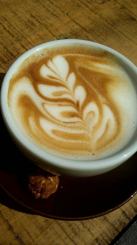 "Photo of GustaV  by <a href=""/members/profile/Tank242"">Tank242</a> <br/>Oat latte art   <br/> August 14, 2017  - <a href='/contact/abuse/image/66733/292587'>Report</a>"