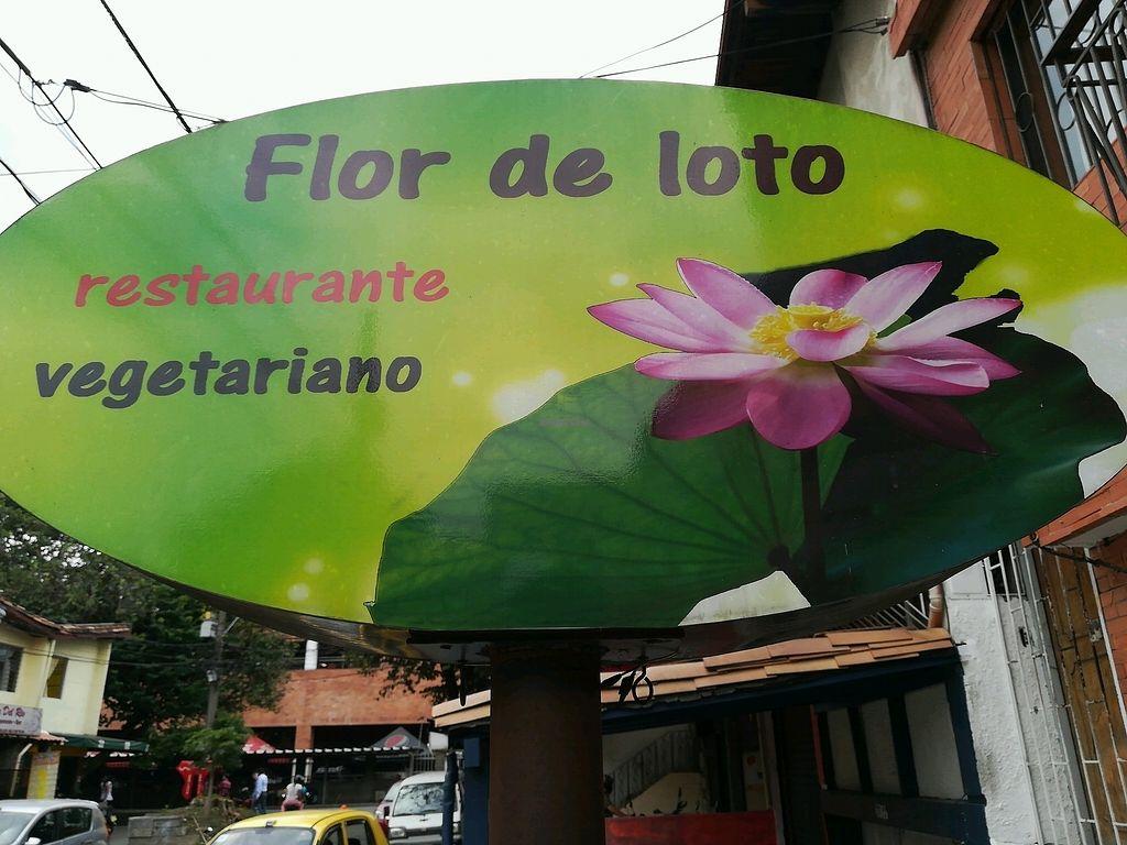 "Photo of Flor de Loto  by <a href=""/members/profile/EduardoChalarca"">EduardoChalarca</a> <br/>aviso  <br/> December 27, 2017  - <a href='/contact/abuse/image/66747/339667'>Report</a>"