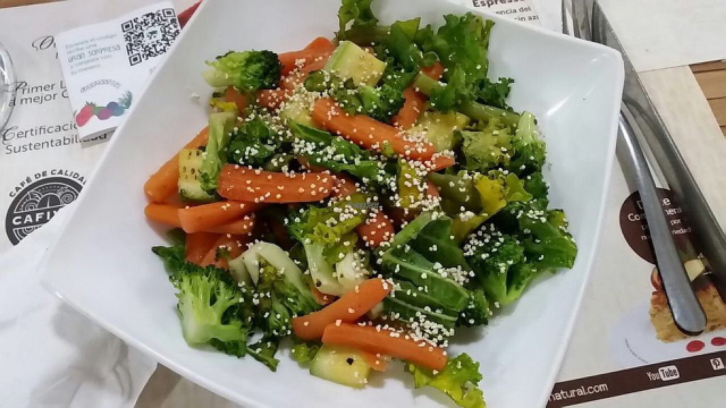 """Photo of 100% Natural  by <a href=""""/members/profile/monisonfire"""">monisonfire</a> <br/>veggie bowl <br/> April 27, 2017  - <a href='/contact/abuse/image/6678/253224'>Report</a>"""