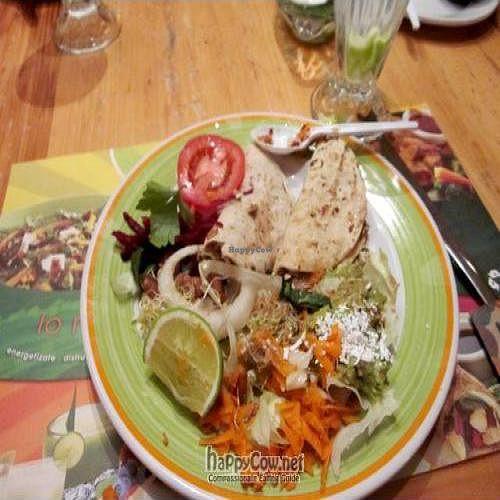 "Photo of 100% Natural  by <a href=""/members/profile/viajandoemily"">viajandoemily</a> <br/>vegan tofu-scramble soft tacos and salad - yum <br/> June 19, 2011  - <a href='/contact/abuse/image/6678/9305'>Report</a>"