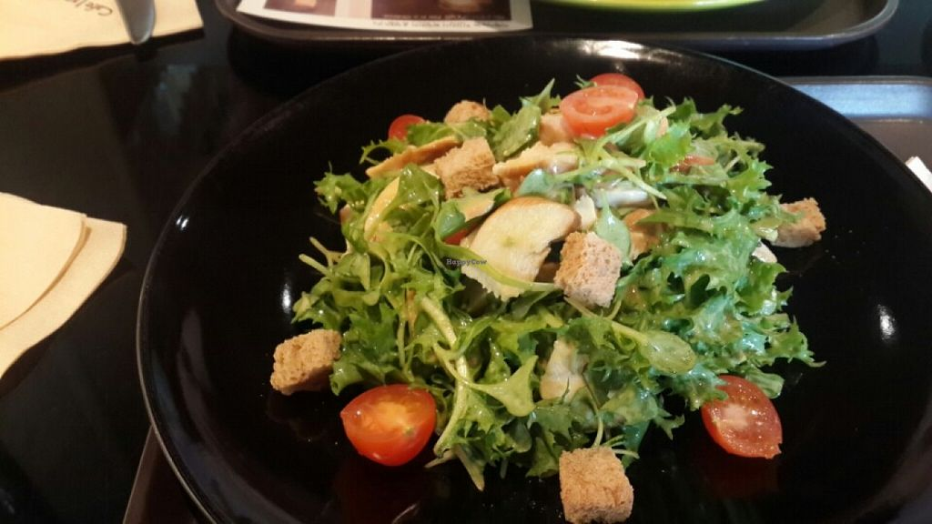 """Photo of CLOSED: Cafe Inu Eco Natural - 카페 이누  by <a href=""""/members/profile/mireia90"""">mireia90</a> <br/>Smoked chicken salad <br/> December 23, 2015  - <a href='/contact/abuse/image/66799/129562'>Report</a>"""