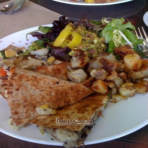 """Photo of CLOSED: Avanti Cafe  by <a href=""""/members/profile/sallyseven"""">sallyseven</a> <br/>Brunch Vegan Quesadilla <br/> November 11, 2009  - <a href='/contact/abuse/image/6686/2918'>Report</a>"""