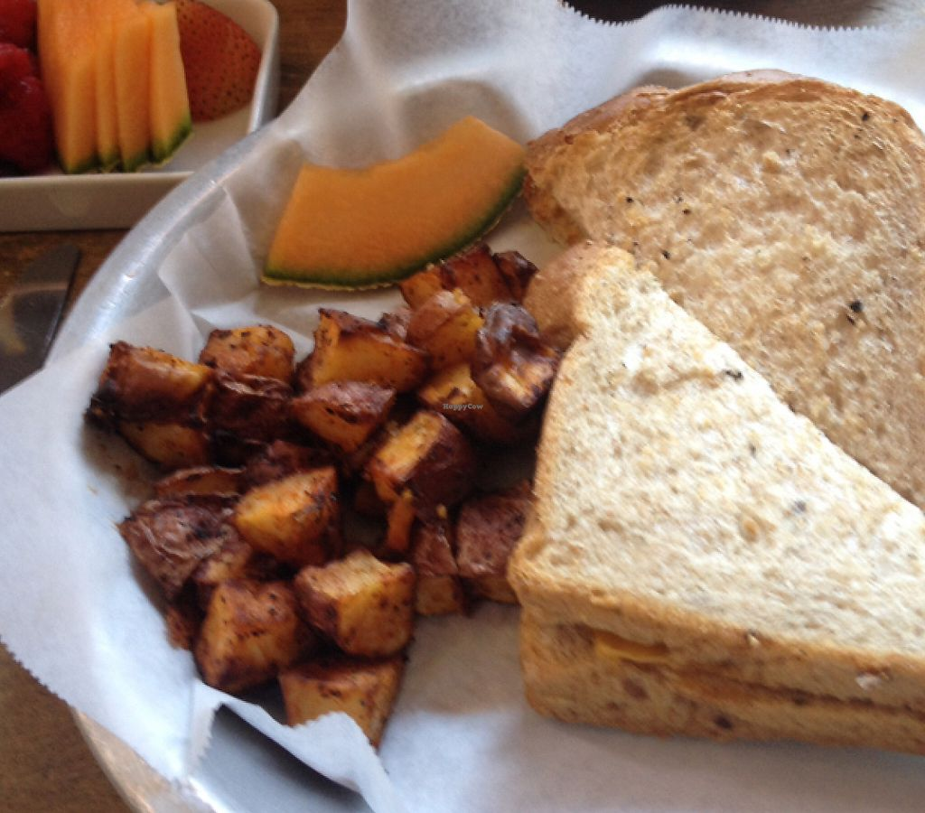 """Photo of LFK  by <a href=""""/members/profile/sophiefrenchfry"""">sophiefrenchfry</a> <br/>vegan grilled cheese <br/> June 20, 2016  - <a href='/contact/abuse/image/66954/201509'>Report</a>"""