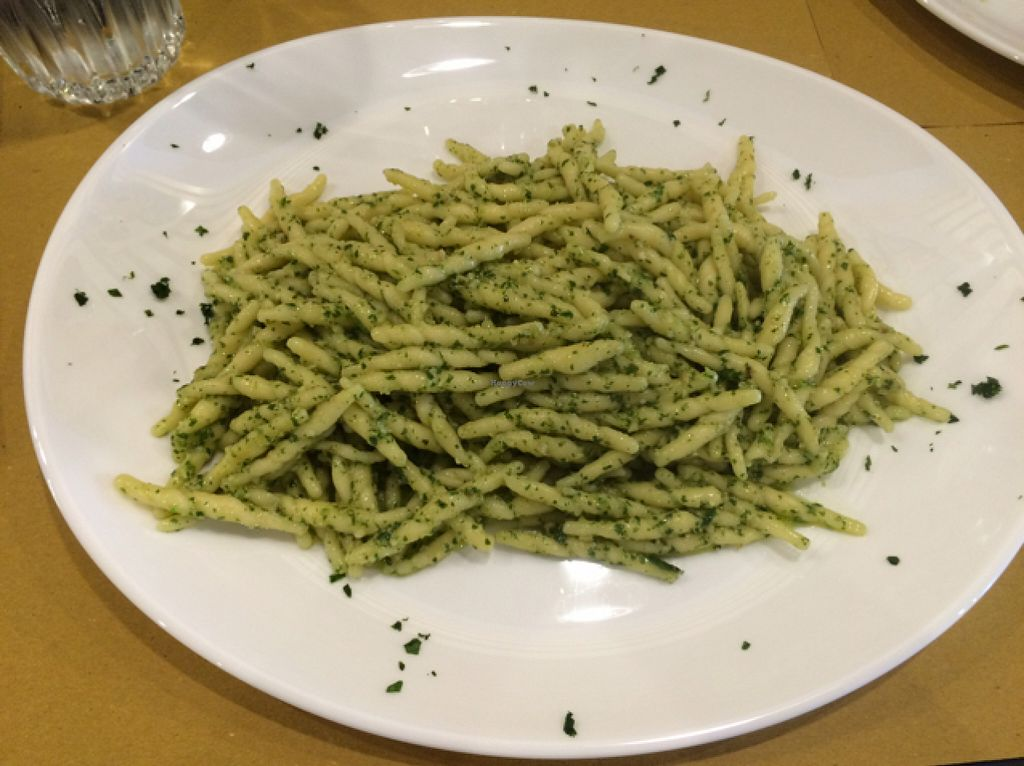 "Photo of AdeVe  by <a href=""/members/profile/amn060708"">amn060708</a> <br/>Vegan Lunch~Garlic Pesto Noodles <br/> July 30, 2016  - <a href='/contact/abuse/image/66962/163394'>Report</a>"