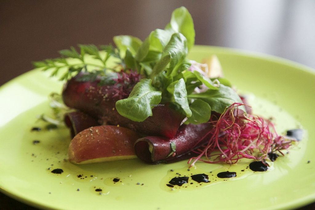 """Photo of Bistro & Cafe Gartenliebe  by <a href=""""/members/profile/Gartenliebe"""">Gartenliebe</a> <br/>Beetroot rolls with sunflower cream <br/> December 12, 2015  - <a href='/contact/abuse/image/66964/128138'>Report</a>"""
